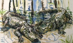 Alligators.jpg