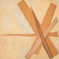 Kindling Wood 3